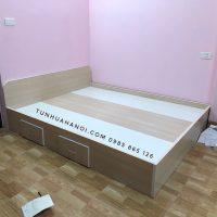Giường nhựa Đài Loan cao cấp, chất lượng